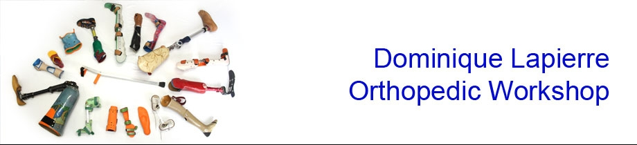 DL Orthopedic Workshop